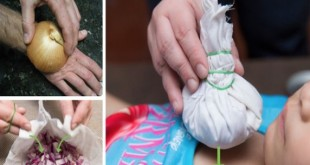 no-one-ever-told-you-onions-could-do-these-miraculous-things